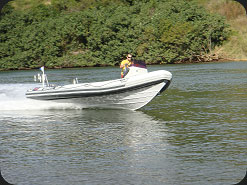 Rigid Inflatable Boat - 750FS