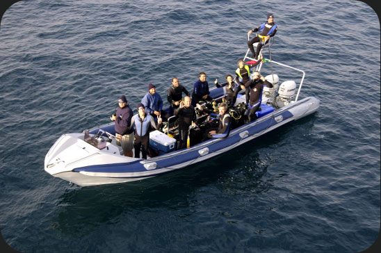 Rigid Inflatable Boat - 900F